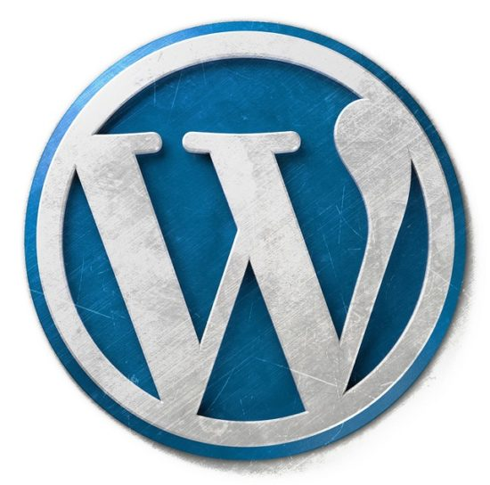 wordpress-logo-wp-agentur